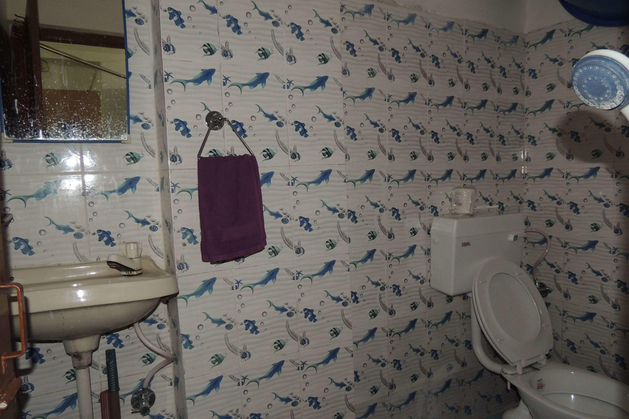 Dr Shahs Clinic Wash room