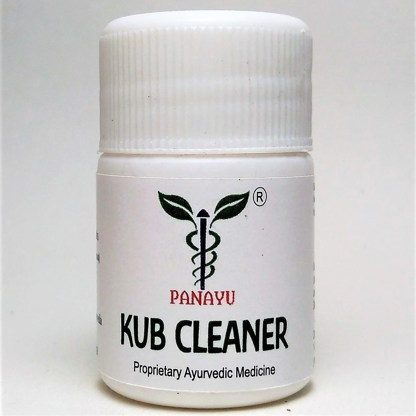 Panayu Kub Cleaner 1